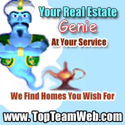 tampa bay real estate genie